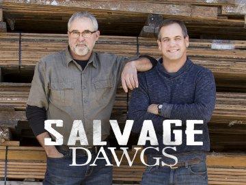 Salvage Dawgs