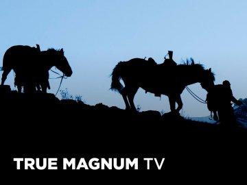 True Magnum TV