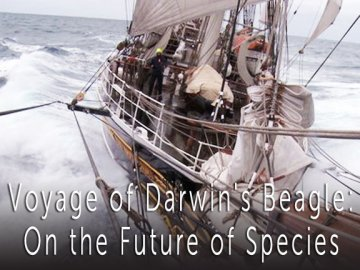 Voyage of Darwin's Beagle: On the Future of Species