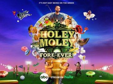 Holey Moley 3D in 2D