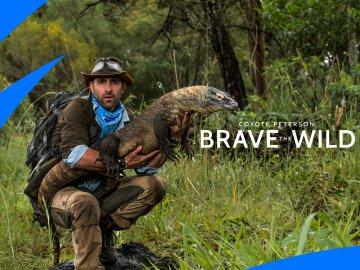 Coyote Peterson: Brave the Wild