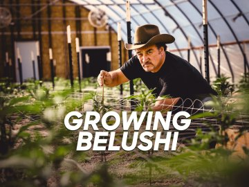 Growing Belushi